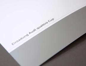 Audi quattro Cup 2014