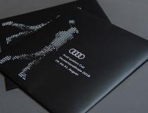 Audi quattro Cup 2018